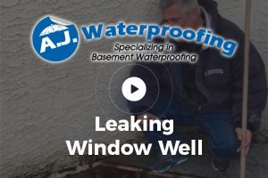 Leaking Window Well